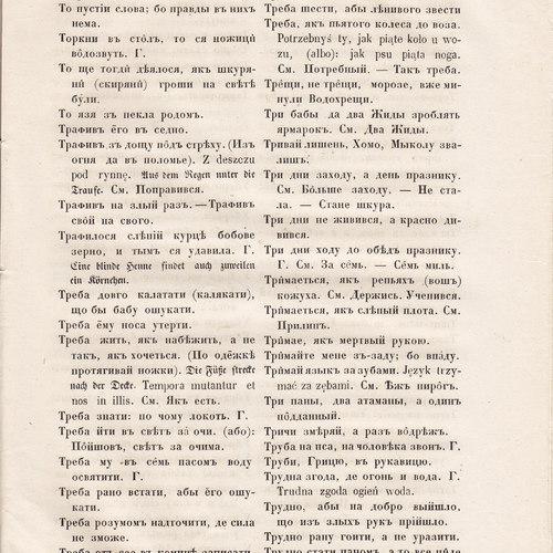 Starosvitsjkyj Bandurysta (217).jpg